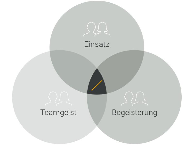 Team Werte